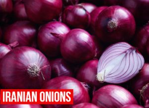 Iranian Onions wholesaler supplier and exporter