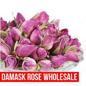 Damask Rose wholesale, Rosewater & Essential oil for Export